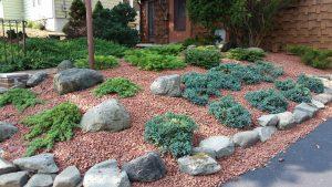 Design Tip Rockin Rock Gardens Hillside Garden Landscaping